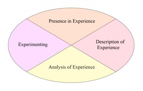 Carol Rodgers' Teacher Reflective Cycle