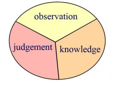 deweys-learning-process02